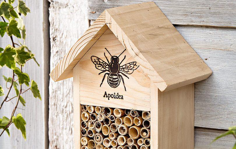 Mit ganz Koblenz für mehr Bienenschutz